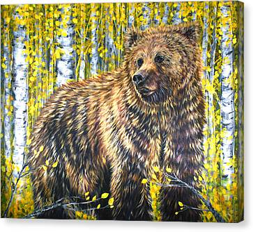 Aspen Bear Canvas Print by Teshia Art