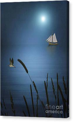 At Sea Canvas Print by Tom York Images