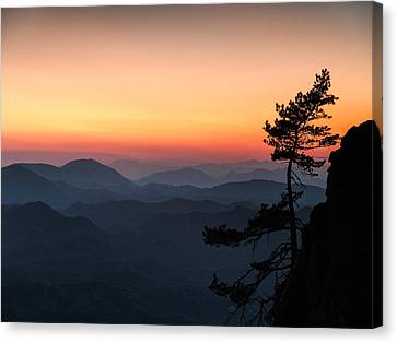 At The End Of The Day Canvas Print by Davorin Mance