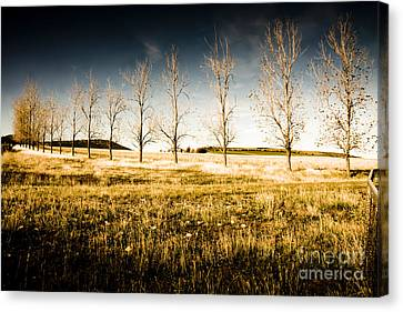 Atmospheric Vibrant And Dark Farming Landscape Canvas Print by Jorgo Photography - Wall Art Gallery