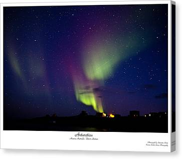 Aurora Australis Canvas Print by David Barringhaus