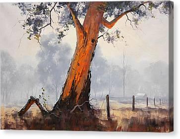 Gum Trees Canvas Print - Australian Eucalyptus Tree by Graham Gercken