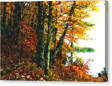 Autumn Colors In The Forest 1 Canvas Print by Lanjee Chee
