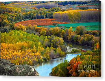 Navarre Canvas Print - Autumn Colors On The Ebro River by RicardMN Photography