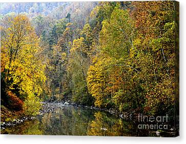 Autumn Elk River Canvas Print by Thomas R Fletcher