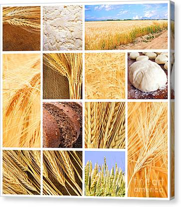 Autumn Harvest Collage Canvas Print by Boon Mee