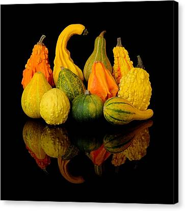 Autumn Harvest Gourds Canvas Print by Jim Hughes