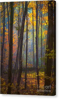 Autumn In Connecticut Canvas Print by Diane Diederich