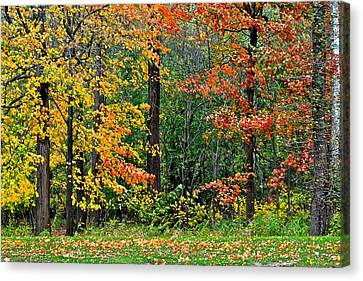 Autumn Landscape Canvas Print by Frozen in Time Fine Art Photography