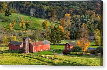 Autumn Light Canvas Print by Bill Wakeley