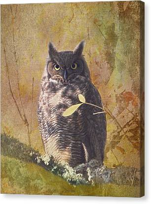Autumn Owl Canvas Print by Angie Vogel