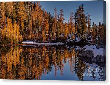 Autumn Reflected Canvas Print by Mike Reid