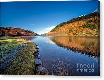 Fall Grass Canvas Print - Autumn Reflections by Adrian Evans