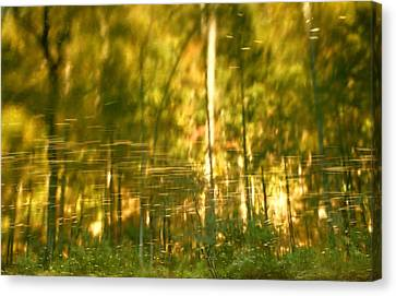 Autumn Reflections In Tennessee Canvas Print by Dan Sproul