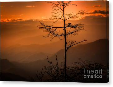 Autumn Stillness Canvas Print by Deborah Scannell
