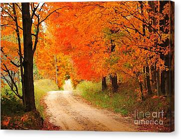 Canvas Print featuring the photograph Autumn Trail by Terri Gostola