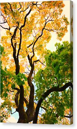 Hdr Landscape Canvas Print - Autumn Tree by Tommytechno Sweden