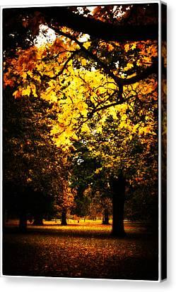 Autumnal Walks Canvas Print by Lenny Carter