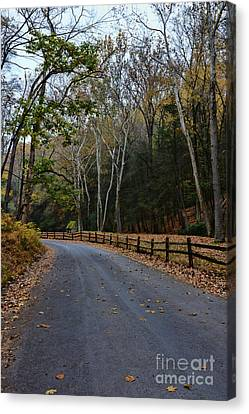 Autumns Road Canvas Print