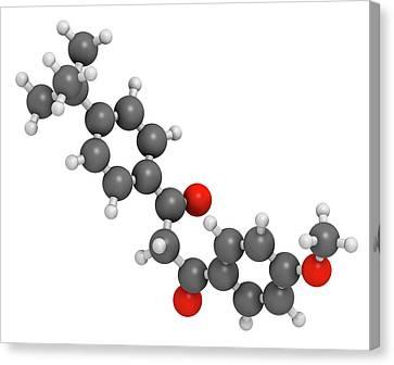 Avobenzone Sunscreen Molecule Canvas Print by Molekuul