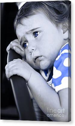 Baby Blues Canvas Print by Jorgo Photography - Wall Art Gallery