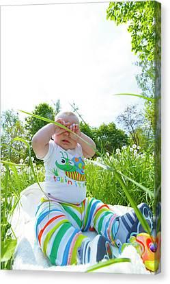 Baby Boy In A Park Canvas Print by Wladimir Bulgar