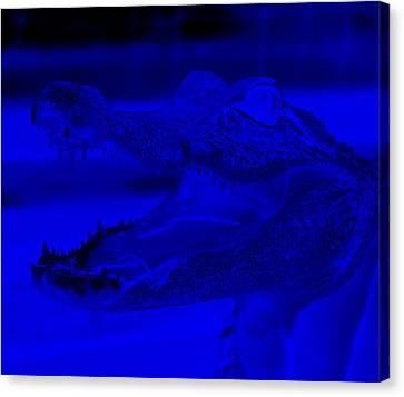 Baby Gator Neg Blue Canvas Print by Rob Hans