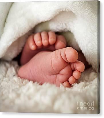 Baby Toes Canvas Print by Kati Molin