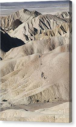 Badlands Canvas Print by Juli Scalzi