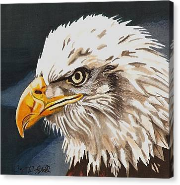 Bald Eagle Canvas Print by Cory Still