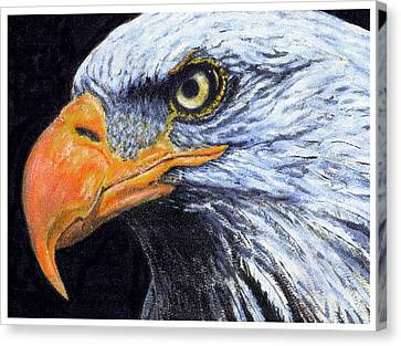 Canvas Print featuring the digital art Bald Eagle by David Blank