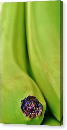 Bananas Canvas Print by Werner Lehmann