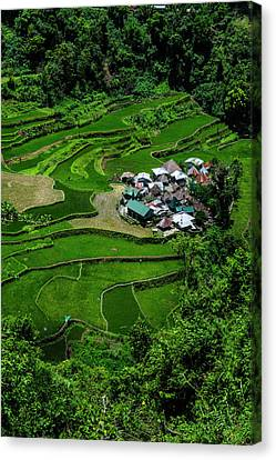 Bangaan In The Rice Terraces Of Banaue Canvas Print by Michael Runkel