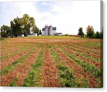 Barn And Silo In A Field, Route 34 Canvas Print by Panoramic Images