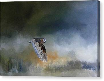 Barn Owl In Flight Canvas Print by Andy Davis