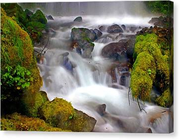 Base Of The Falls Canvas Print by Marty Koch