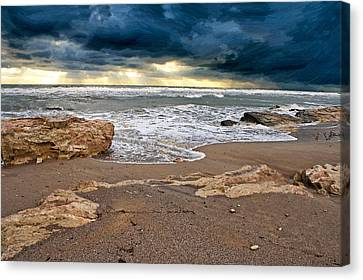 Beach. Canvas Print by Alexandr  Malyshev