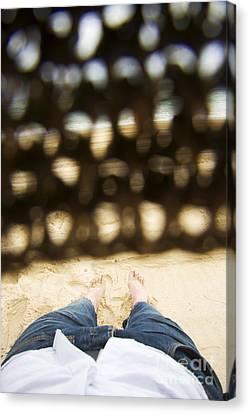 Catnap Canvas Print - Beach Sleeper by Jorgo Photography - Wall Art Gallery