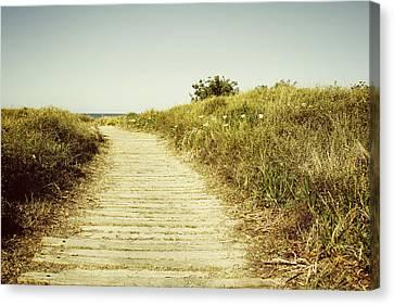 Beach Trail Canvas Print by Les Cunliffe