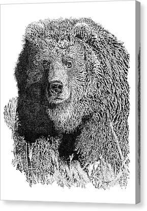 Bear 1 Canvas Print