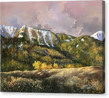 Canvas Print featuring the painting Bear Claw by Lynne Wright