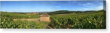 Beaujolais Canvas Print - Beaujolais Vineyard, Saules by Panoramic Images