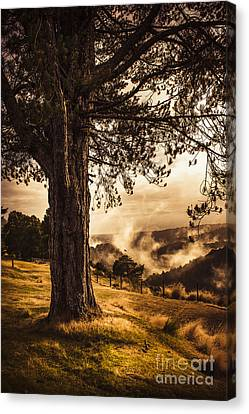 Beautiful Autumn Tree Landscape In A Serene Park Canvas Print by Jorgo Photography - Wall Art Gallery