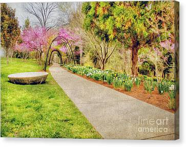 Beautiful Spring Canvas Print by Darren Fisher