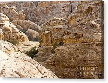 Beidha, Jordan Canvas Print by Adam Sylvester