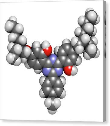 Bemotrizinol Sunscreen Molecule Canvas Print by Molekuul