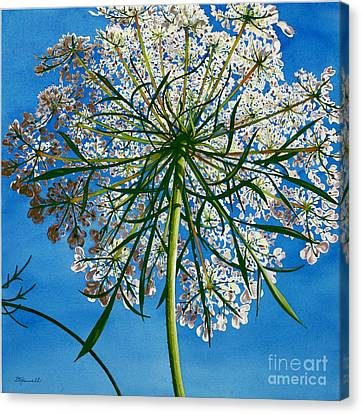 Canvas Print featuring the painting Beneath Queen Anne's Lace  by Barbara Jewell