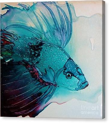 Betta Dragon Fish Canvas Print