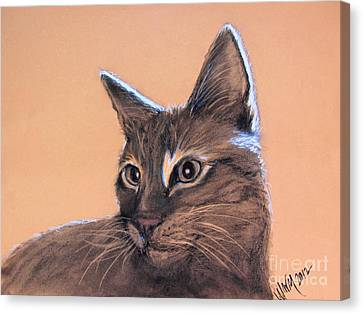 Big Kitten Canvas Print