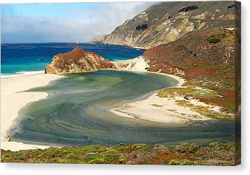 Big Sur Canvas Print by Mamie Gunning